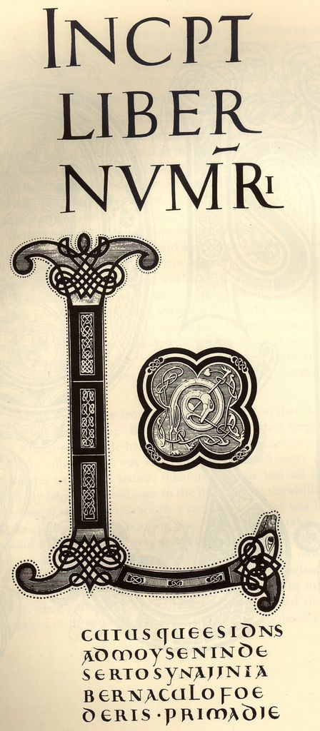 1000 Images About Calligraphy Celtic Cadel On Pinterest