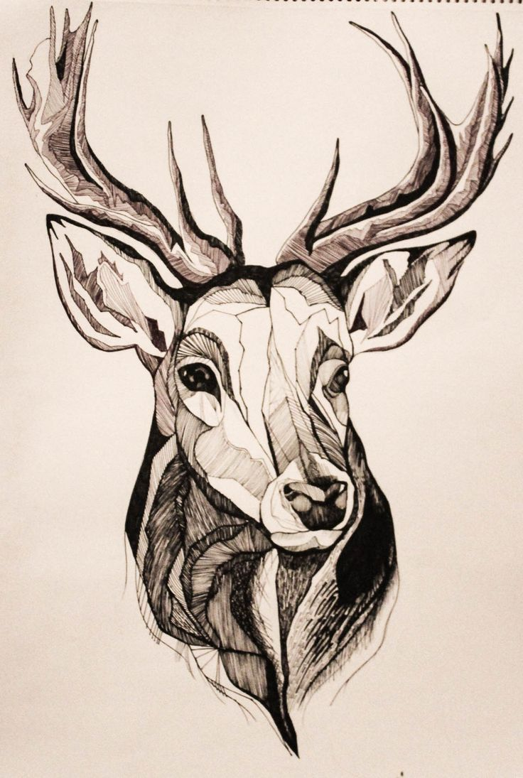 New winter design, now going to be available in a jumper! www.koalaclothing.bigcartel.com #stag #drawing