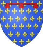 "House of Anjou Fulk V 'Le Jeunne' 'The Younger' ""King of Jerusalem"" Count Anjou 27th great grandfather"
