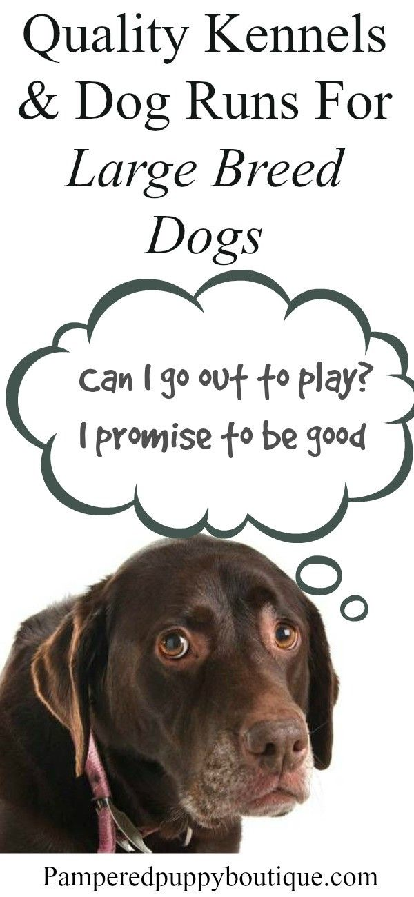 Quality Kennels and dog runs for large breed dogs because your dogs like to be  outside and you need to keep them safe.