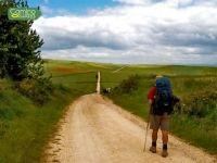Camino Ways