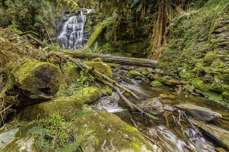 https://flic.kr/p/qpAraP | Allambee Beek Falls Otway Ranges | This is a little known waterfall in the Otways which can be reached by heading into the bush on the right half hour walk or so down the Curtis Track off the Mt. Sabine Road and then following pink ribbons tied to trees through dense forest for a few kilometres. I managed to get there around midday but the light was pretty poor for waterfall photography.  However, as this waterfall is rarely visited due to its difficult access I…