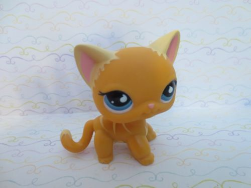 Littlest Pet Shop No Number Short Hair Orange Yellow Puzzle Cat