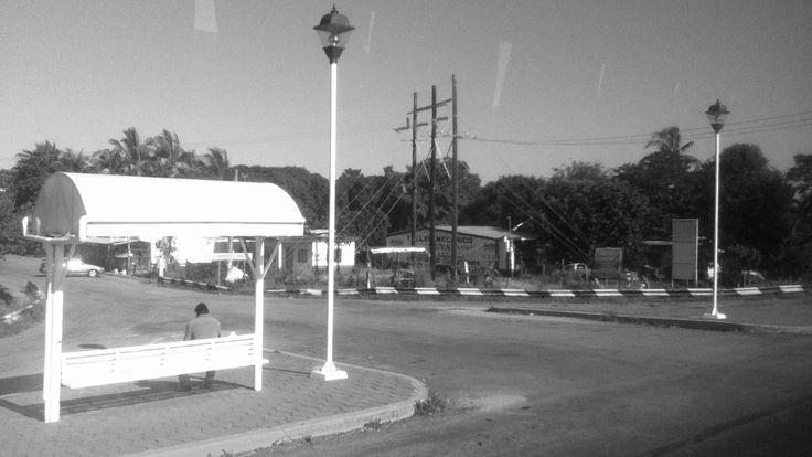 En esta fotografía no se muestra el rostro porque la persona que espera el camión en la parada, simboliza a todas las personas que día con día desesperan porque el transporte no llega, pudiendo hacer muchas otras cosas como la lectura de un buen libro. La foto la tomé desde un autobús en movimiento a la altura del Farallón, carretera Veracruz-Poza Rica.  En el trayecto busqué un plano general abierto con filtro de  grises donde estuviera una persona sentada de espaldas. Y la encontré.