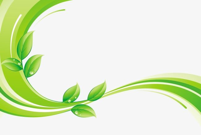 Green Leaf With Decorative Lines Green Leaf Line Type Png Transparent Clipart Image And Psd File For Free Download Decorative Lines Cool Wallpapers For Phones Fresh Logo Design