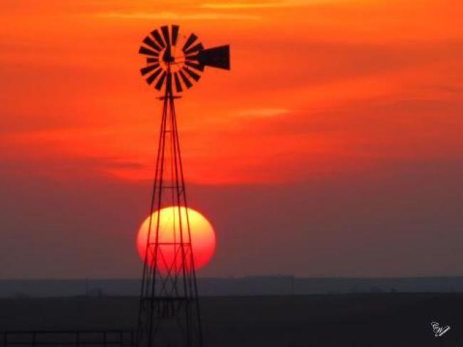 Photos: West Texas windmills at sunset | Amarillo Globe-News