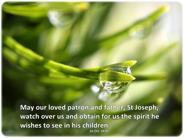 May our loved patron and father, St Joseph, watch over us and obtain for us the spirit he wishes to see in his children
