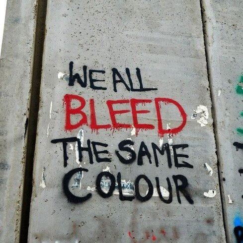 We all bleed the same colour | Anonymous ART of Revolution