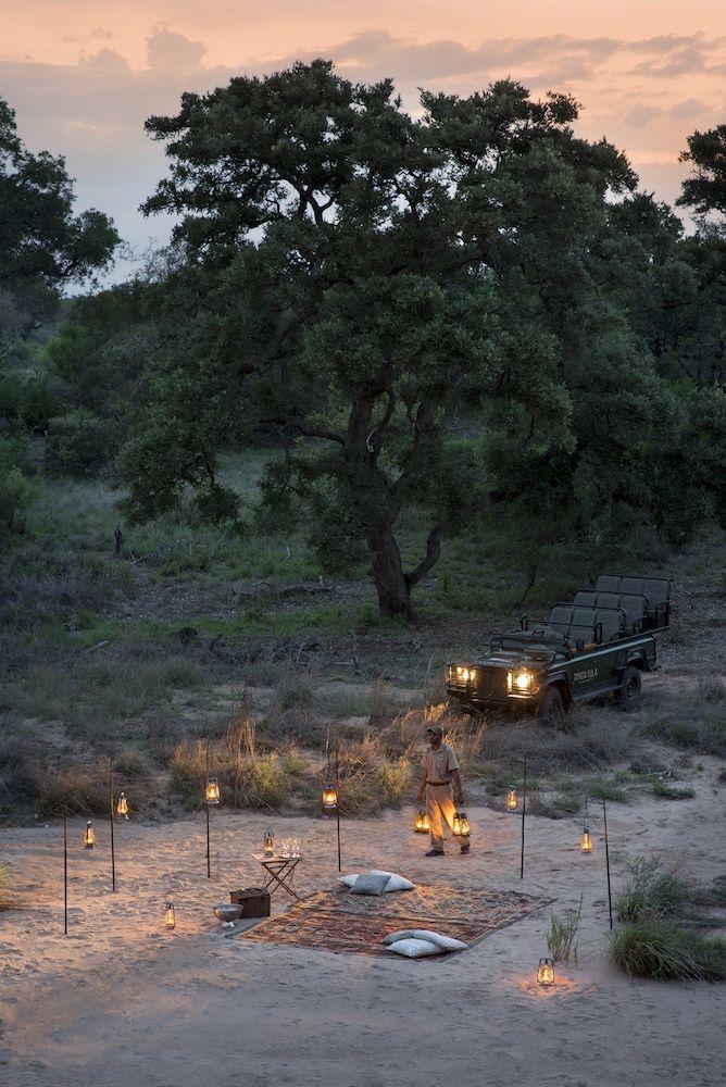 Tanda Tula Gallery - Photo's of a luxurious African Safari in the Timbavati