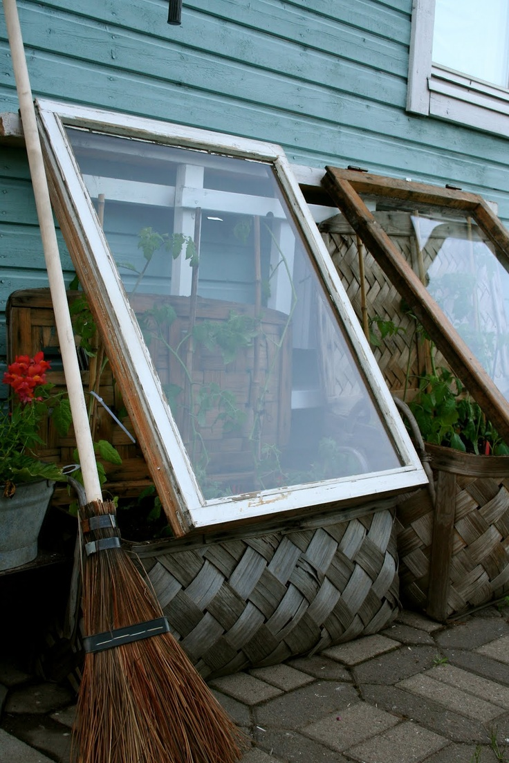 1000 Images About Small Greenhouse On Pinterest Gardens