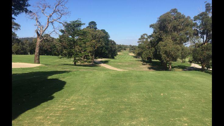 Wavelery Golf, keep it straight on hole 11 tee off
