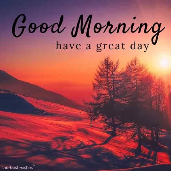150 Fresh Beautiful Good Morning Images With Nature Good Morning Nature Good Morning Happy Sunday Good Morning Images