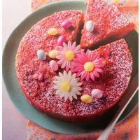 Moelleux aux Biscuits Roses de Reims