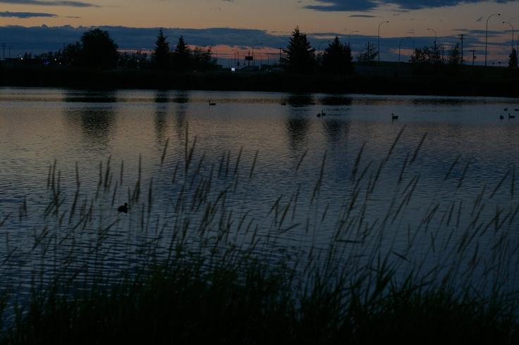 Park in Leduc, Alberta