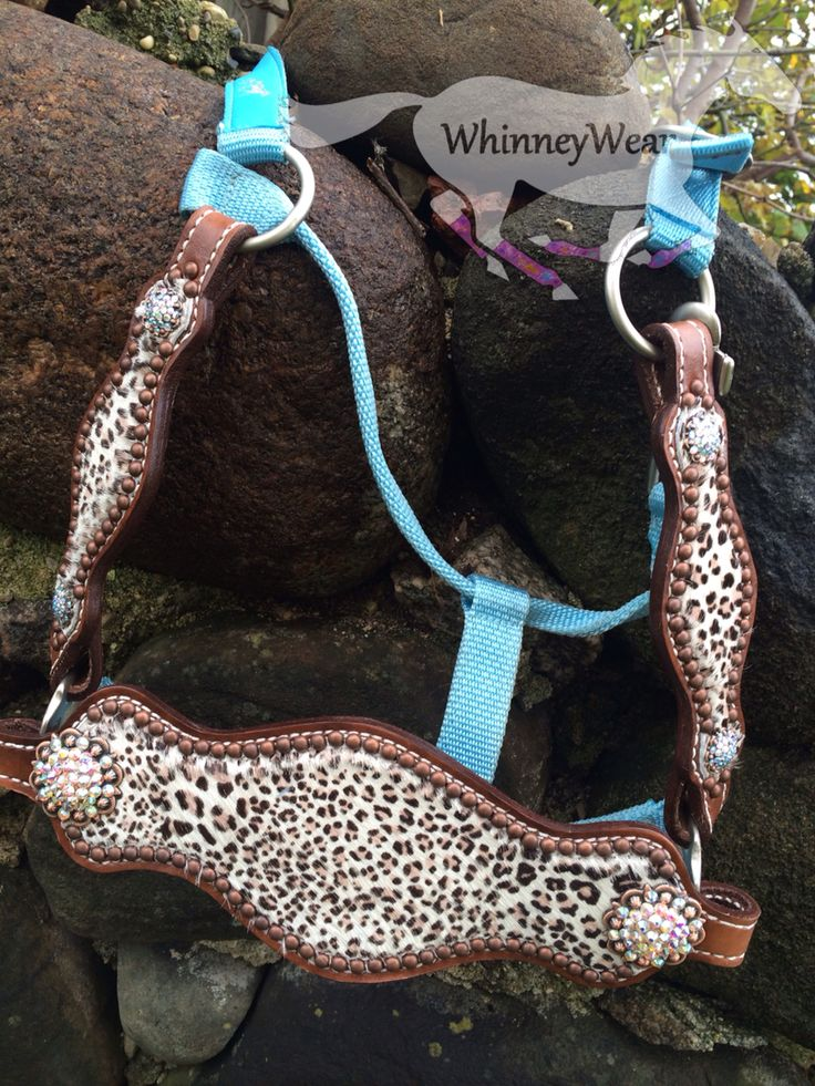 Custom made to order, Cheetah Hair on Hide bronc noseband with cheeks. Adorned with copper spots, berry conchos with swarovski AB crystal rhinestones. Email whinneywear@yahoo.com to order & discuss pricing on your own custom halter
