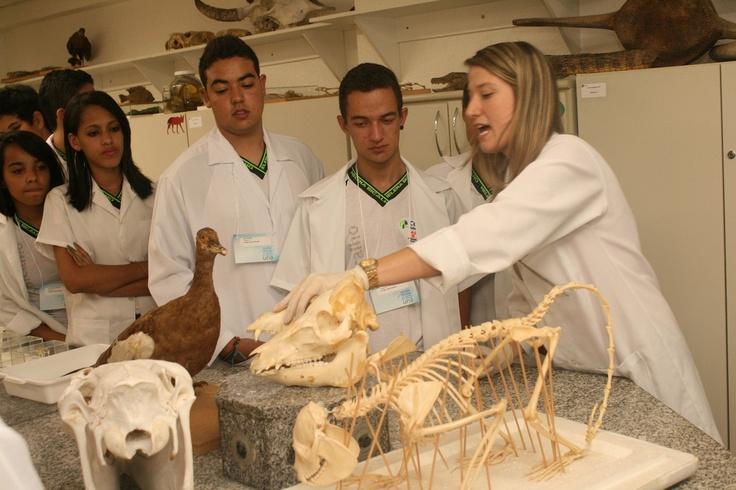 """Imagine descobrir como crescem os micro-organismos, observa-los pelo microscópio, saber como são fabricadas cápsulas de medicamentos, desvendar as características de animais venenosos, as estruturas do corpo humano, além de ter a oportunidade de conhecer, na prática, tudo sobre o DNA. A Una convidou alunos do ensino médio de BH a desvendarem o mundo da ciência nos modernos laboratórios do Instituto de Ciências Biológicas, durante o projeto """"Viagem irada ao mundo da Ciência""""."""