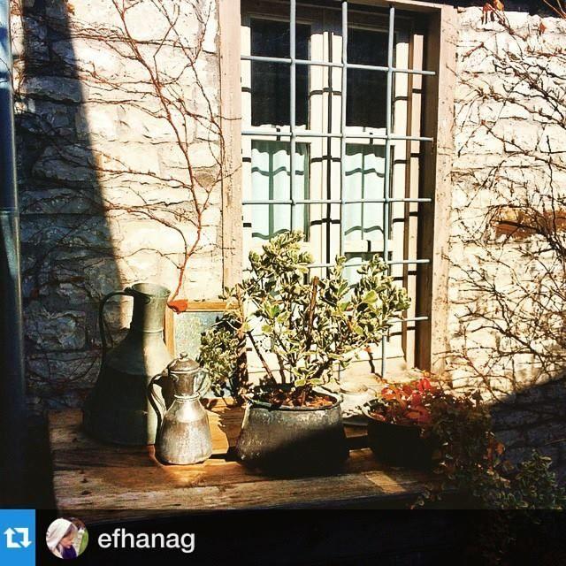 #Repost @efhanag with @repostapp.・・・Όμορφη μέρα..καλημέρα!#memories#papigko#zagoroxwria @avragonio #thebestplace