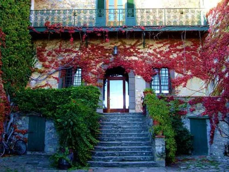 The highlight of this villa is that the villa's garden is green during the period from spring to autumn and later turns into the color fire-red. The villa's structure along with the courtyard is in the shape/form of a horseshoe. http://www.ciaoitalyvillas.com/tuscany-vacation-rentals/florence/barberino-val-d-elsa-villas/10425