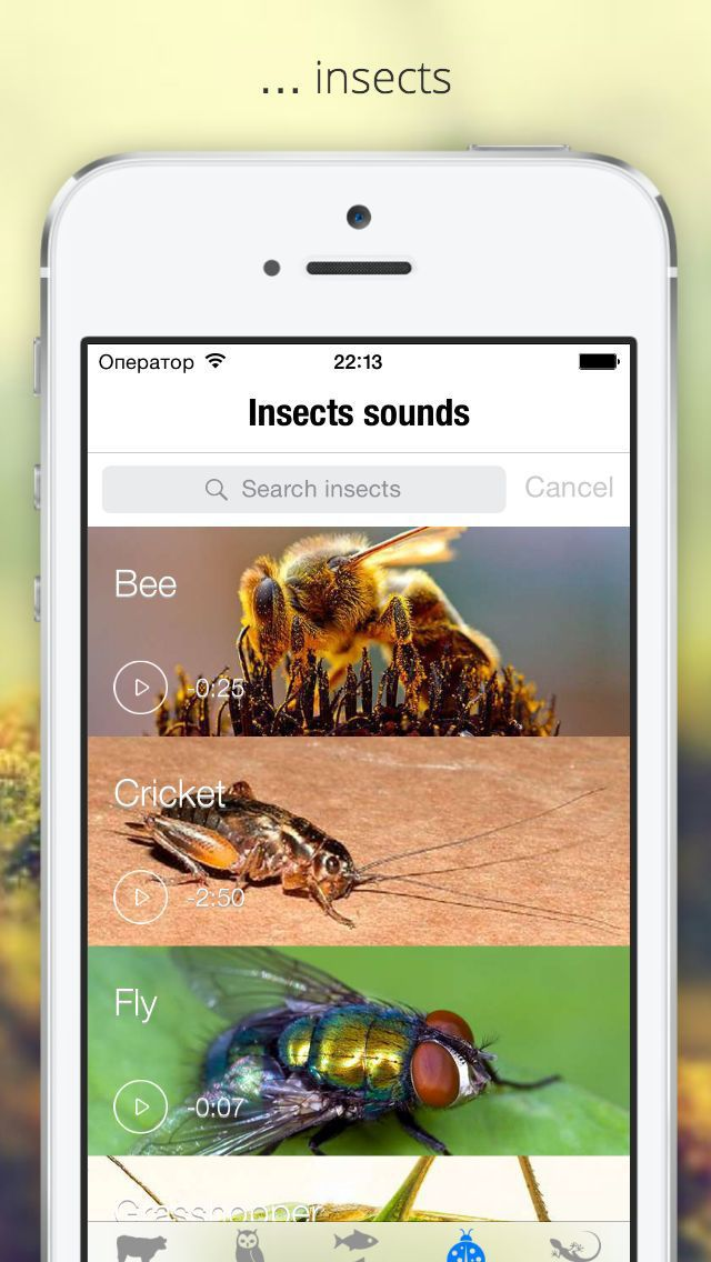 """""""Zoo voices"""" - a collection of voices animals, insects, amphibians and birds. You will plunge into the wonderful world of sounds. Enjoy, play with the kids and have fun.  The catalog contains more than 50 species of animals, 100 species of birds, insects, amphibians and marine animals."""