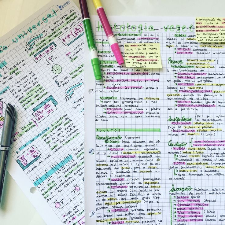 29 . 09 . 2016 // today's biology and physics notes! [Taken from my ig: getstudyblrs]