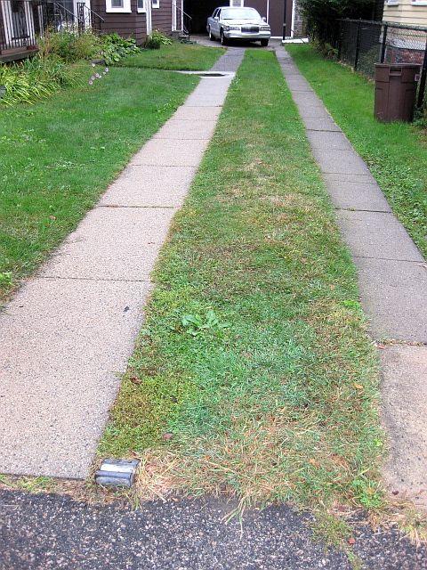 11 best split driveway images on pinterest driveway for Driveway addition ideas