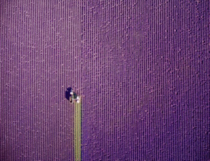 20 of the Most Beautiful Drone Photos of 2016