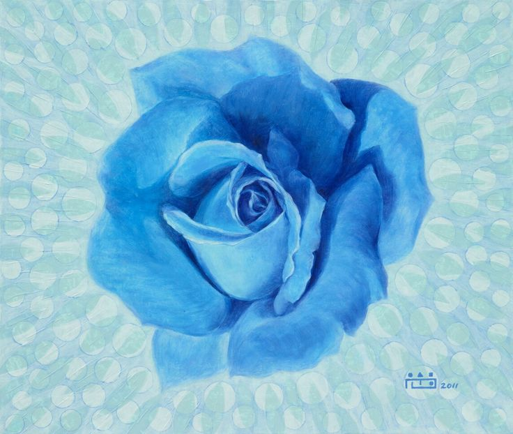 Blue Rose-불가능은 없다