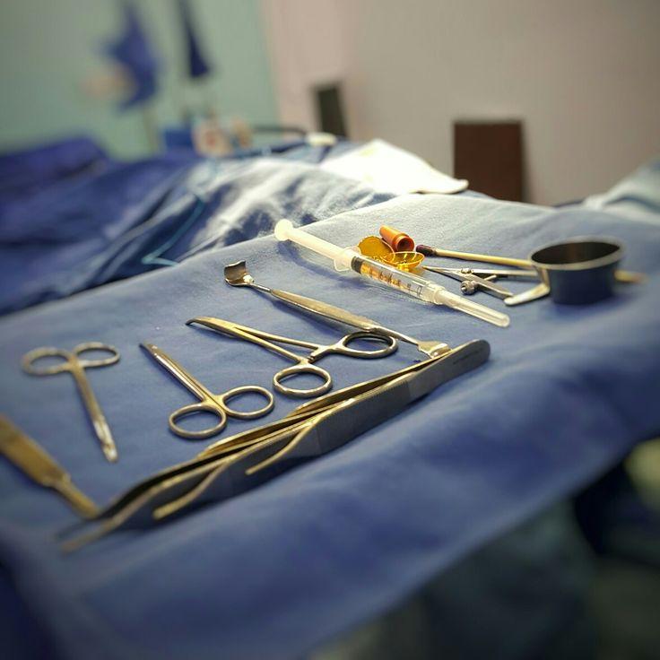 Dr. Gerardo Camacho  Cirujano Plastico Estetico Reconstructivo  Miembro Sociedad Colombiana de Cirugia Plastica S.C.C.P Bogota - colombia Contactenos +(57) 3187120345  Visita nuestro Website : http://www.gerardocamacho.com/  #Laserlipólisis #cirujanoplastico #cirugiaestetica  #lipolisis  #Lipolisisvaser  #cirugiadenariz  #cirujanosbogota #blefaroplastiasuperior #esteticafacial  #cirujanosplasticos #cirugiaplasticabogota #DefinicionAbdominales  #bodycontour  #abdominaletching  #lipolaser…