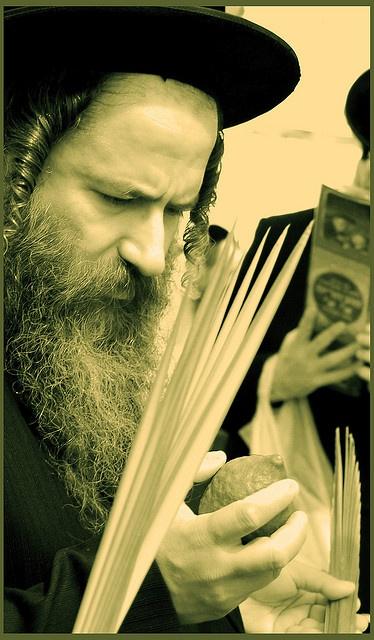 Bird Island MN Jewish Single Men
