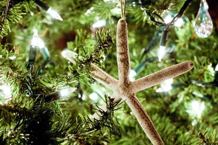 How to Have a Coastal Christmas