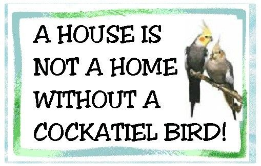 Cockatiel A House Is Not A Home MAGNET by tedwards52 on Etsy, $4.79