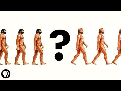 YouTube. There Was No First Human It's Okay To Be Smart 1,631,630 views