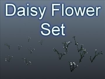 Daisy Flower Set 001 3D Model-   Set of 14 unique Daisy flowers.Good geometry, useful for near renders. Enable Two Sided rendering in your rendering application. The 3ds Max 8 material setup (textures are included) has the flower materials set to 2-sided rendering, leaves have local material supersampling enabled for accuracy with the leaf opacity map. These preview images were rendered in 3ds Max 8, scanline renderer, with basic lighting, nothing fancy. User will need to light the flowers from their own scene and rendering setup. You may need to reloadreassign the textures after loading the file, same goes for the 3DS and OBJ formats.Triangles: 23500Vertices: 25000Item Count: 14 unique flowers. - #3D_model #Flowers