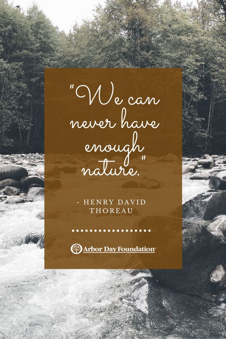 best ideas about henry david thoreau thoreau henry david thoreau