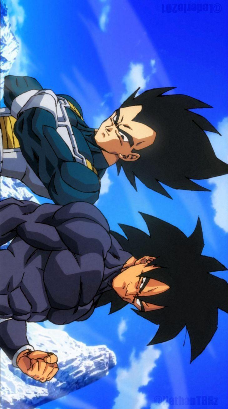 Vegeta Y Broly Anime Dragon Ball Super Dragon Ball Painting Dragon Ball Art