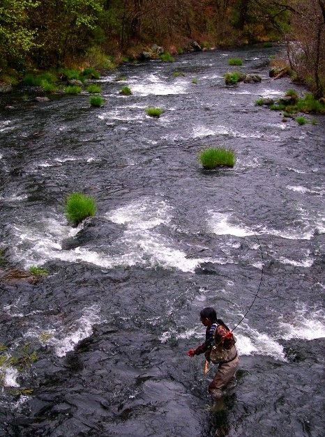 62 best places siskiyou county images on pinterest for Fishing spots in sacramento