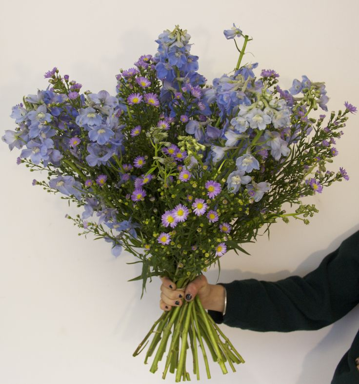 Delphiniums and Aster (September) combined to create this blue and lilac beauty
