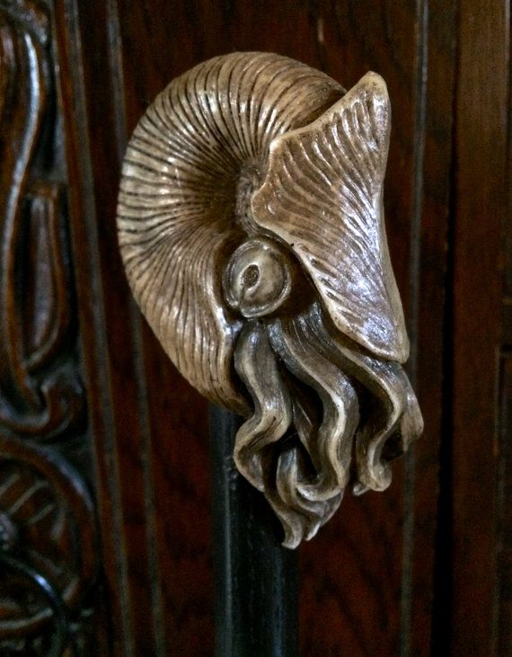 A Nautilus headed cane, measures 37.5 tall. The head is 3.5 x 1.25, cast in a durable resin infused with porcelain powder and hand painted. The stick is black varnished oak, 3/4 thick, with a standard rubber cane tip.