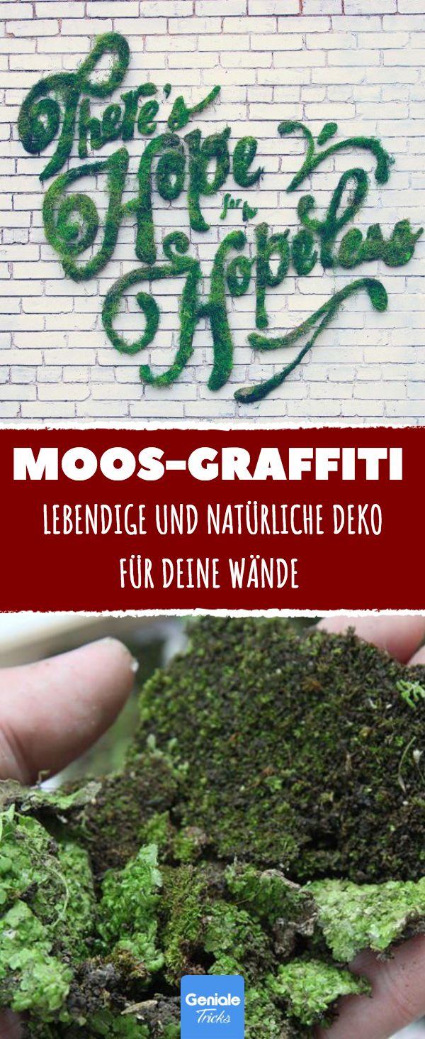 Wenn die Pampe auf der Wand verteilt wird, sieht es aus wie Vandalismus. Aber Tage später gehen allen die Augen über! #moos #graffiti #deko #garten