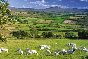 Ontdek eigenzinnige accommodaties voor je verblijf in Noord-Ierland