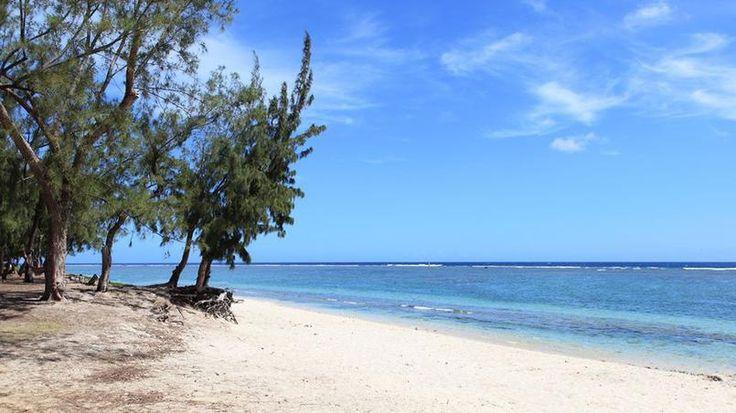 La plage de l'Ermitage - Bordée par les filaos, cette plage de sable fin court sur 7 kilomètres. Protégé par un récif corallien, son lagon est classé Réserve naturelle. Une des plus belles plages de l'île.