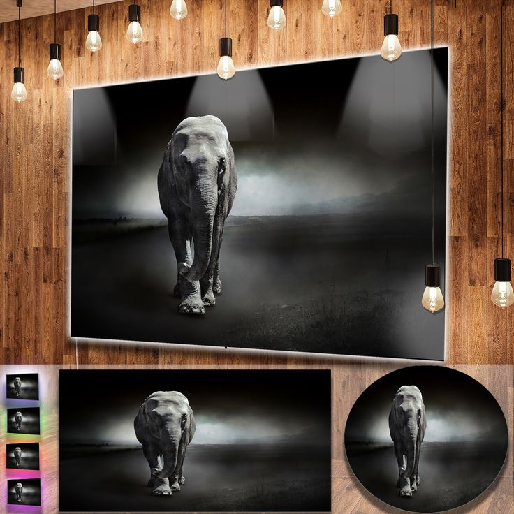 Metal Wall Decor Animals : Ideas about elephant wall art on