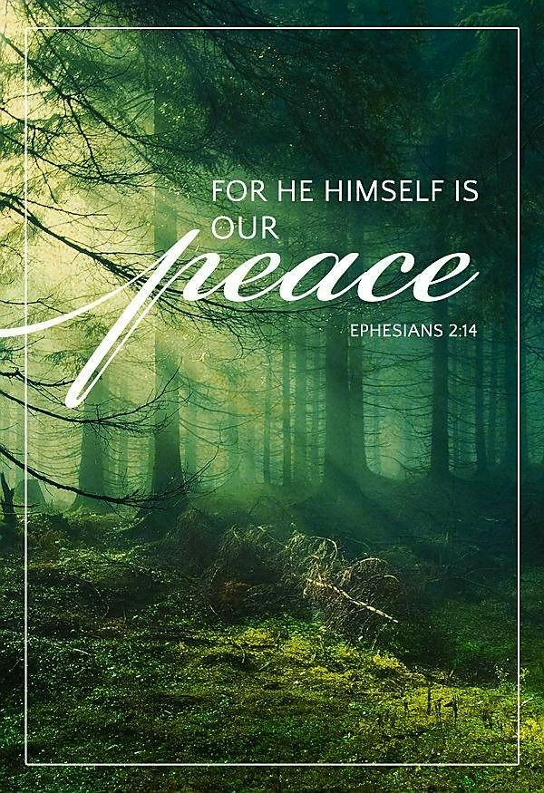 For He Himself is our peace.
