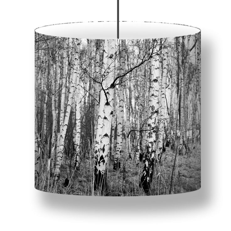 Photo Lamps with birch trees from Kalvebod Fælled - Denmark. A  graphic black & white print of Birch trees from Kalvebod Fælled during winter. Wow... den er fed<3