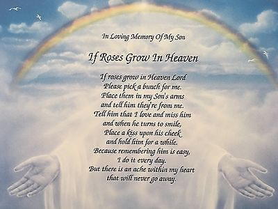 Sympathy Gift Son If Roses Grow In Heaven Sympathy Poem In Memory Of Son