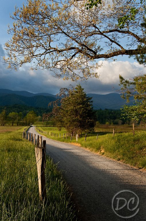 Hyatt Lane #CadesCove Photo copyright © Deb Campbell, all rights reserved - #SmokyMountains http://www.visitsevierville.com/