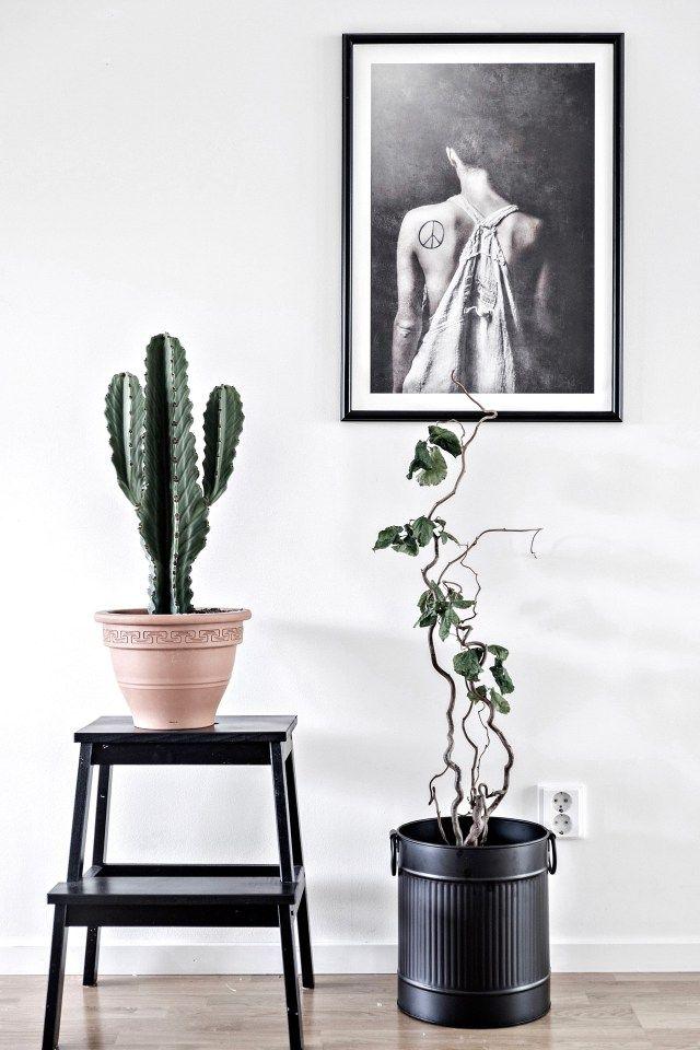 Strömshaga, Stromshaga, interior, inredning, swedish design, scandinavian interior, livingroom, vardagsrum, kruka, stor kruka, pots, cactus, kaktus
