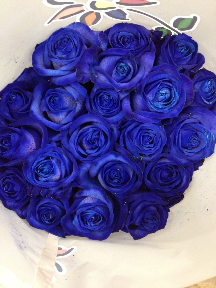 Blue Roses These Are Dyed Flowers Sold In Bunches Of 20 Stems