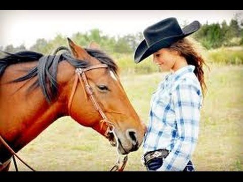 Full Compilatoin Horse Mating 2015