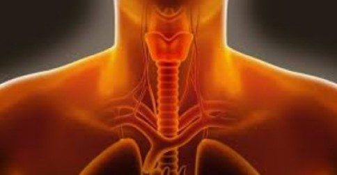 Πώς σταματάει ο επίμονος λόξιγκας γρήγορα: http://biologikaorganikaproionta.com/health/250593/